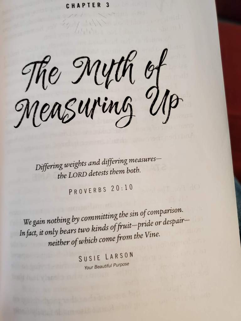 Intro to Chapter 3 of Free to Lean by Jocelyn Green - The Myth of Measuring Up