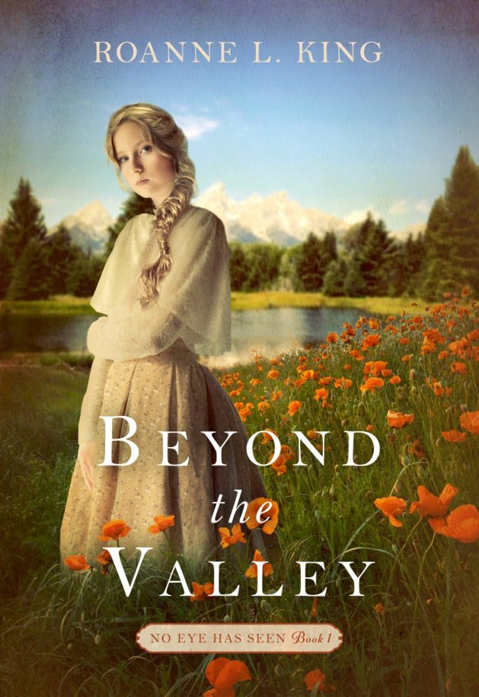 Beyond the Valley book cover